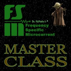 FSM Master Class Art